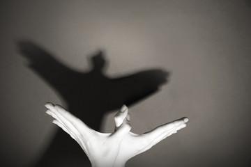 El Espíritu Totem del Cuervo: El mensajero del Vacio y de la Sombra