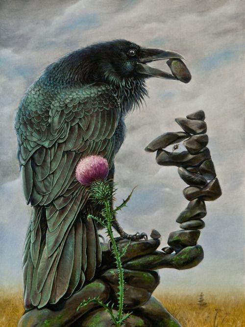 cuervo (1)
