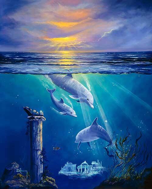 delfin7