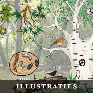 illustraties
