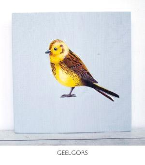vogel geschilderd