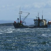 Chilean fishing boat sheltering at Caletta Lennox.