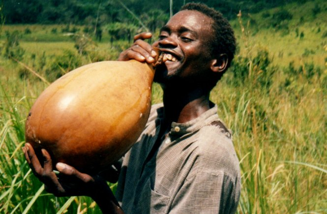 #BlogFest: The Aftermath of Poverty and Palm wine