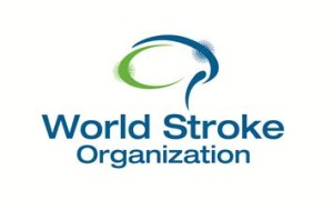 world stroke organisation