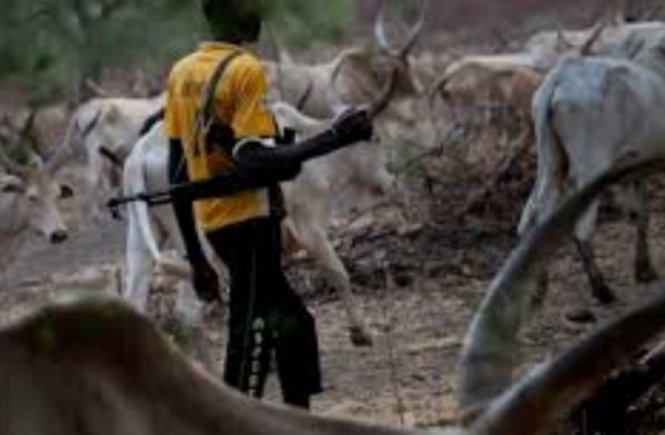 Of Fulani Herdsmen and the Hideousness of Silence Question