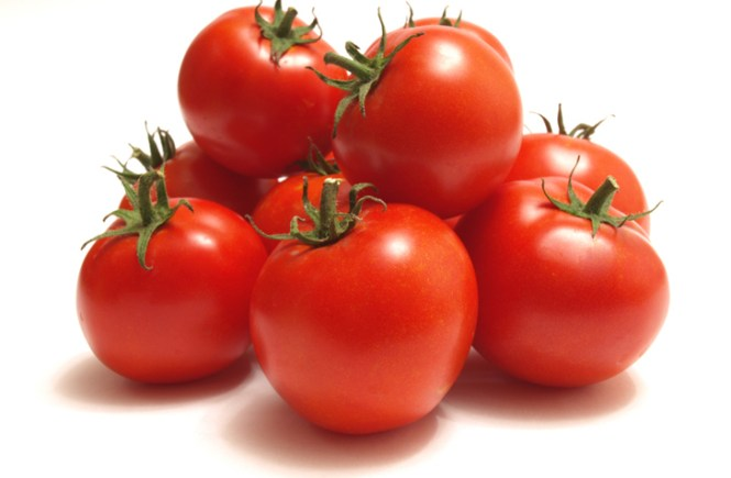 5 Ways to Save Your Tomato Farm From Pest Attacks - Professor