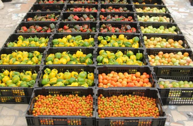 Agricultural sector in Nigeria - Elsieisy blog