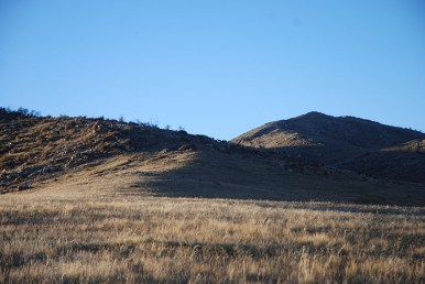 Hustai nationaal park Mongolië rendieren
