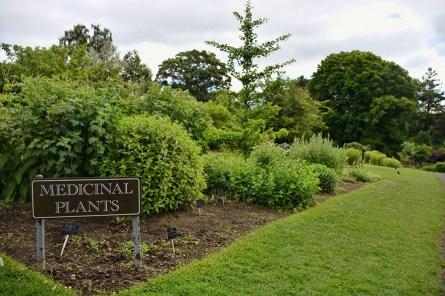 Botanische tuinen Glasgow medicinale planten