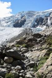Buer gletsjer Noorwegen