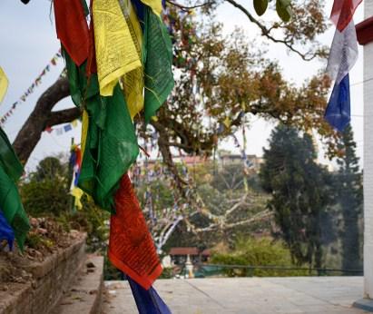 Gebedsvlaggen bij Swayambhu Monkey tempel Kathmandu