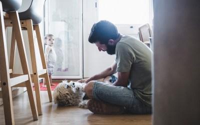 Fotógrafo de Mascotas: Quédate siempre Marvin