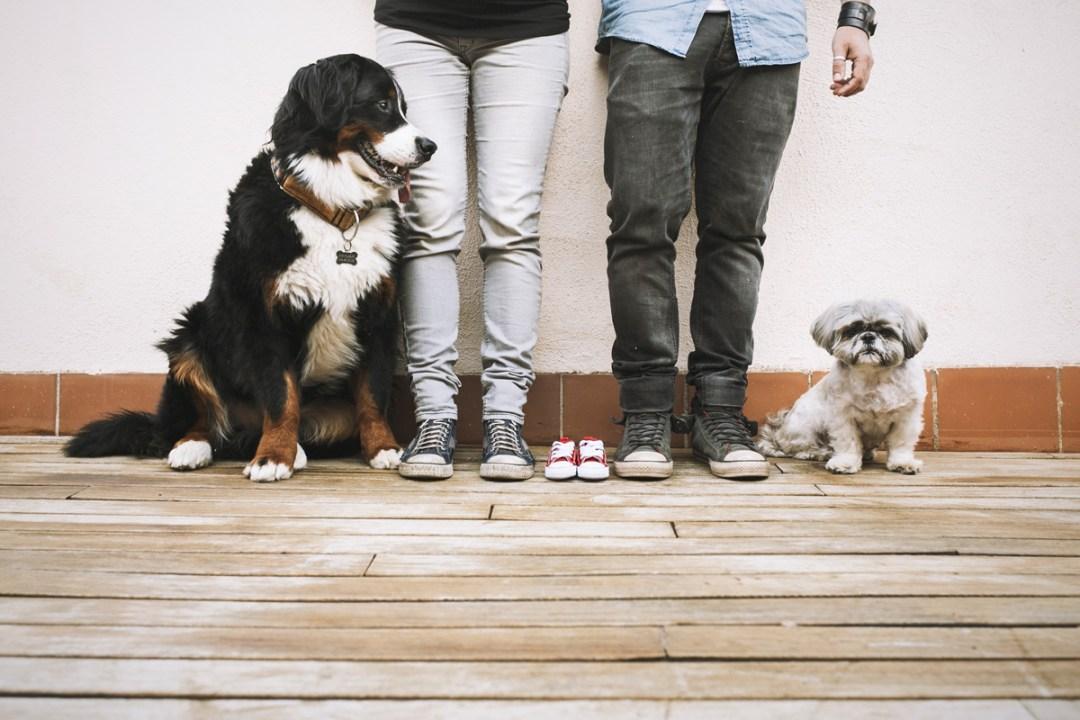 """Fotógrafo de mascotas """"baby Ona, la teva familia mola mil"""""""