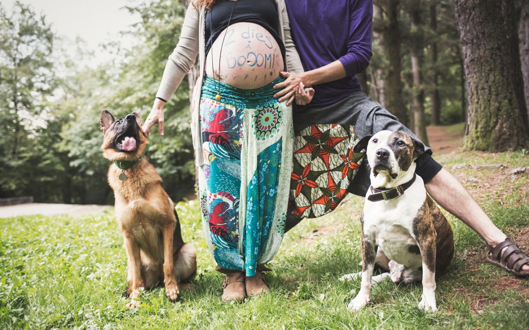 """Fotógrafo de mascotas """"pre-mamá en el bosque con Jamfri & Loba"""""""