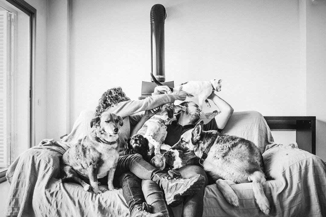 reportaje de familias con mascota en el sofá de casa