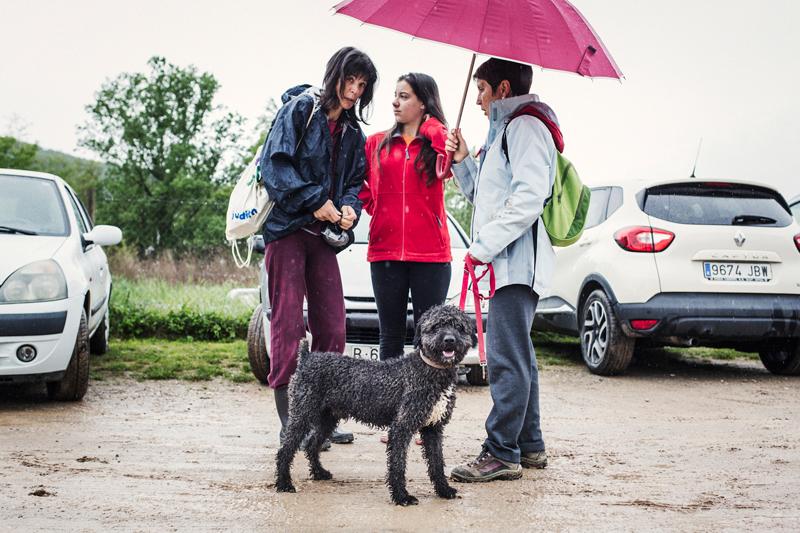 011_caminada popular solidaria _fotografo mascotas_adoptanocompres
