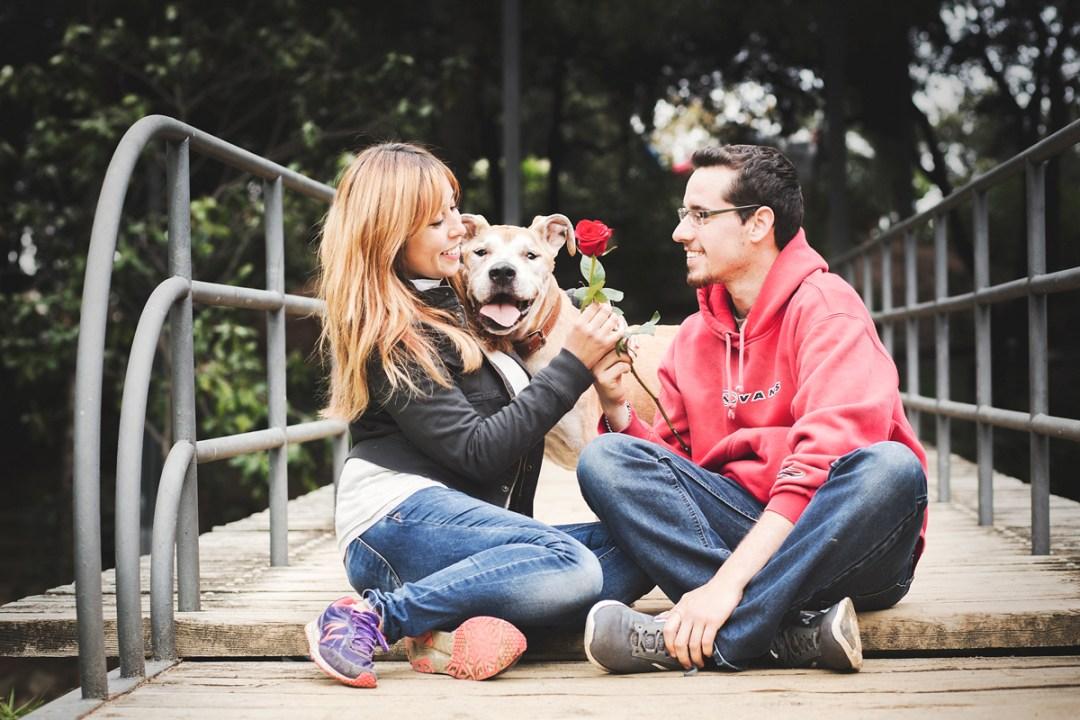 reportaje de perro PPP American Stanford y su familia en el parque en Sant Jordi