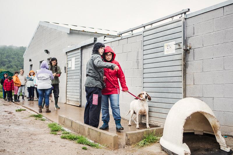 015_caminada popular solidaria _fotografo mascotas_adoptanocompres