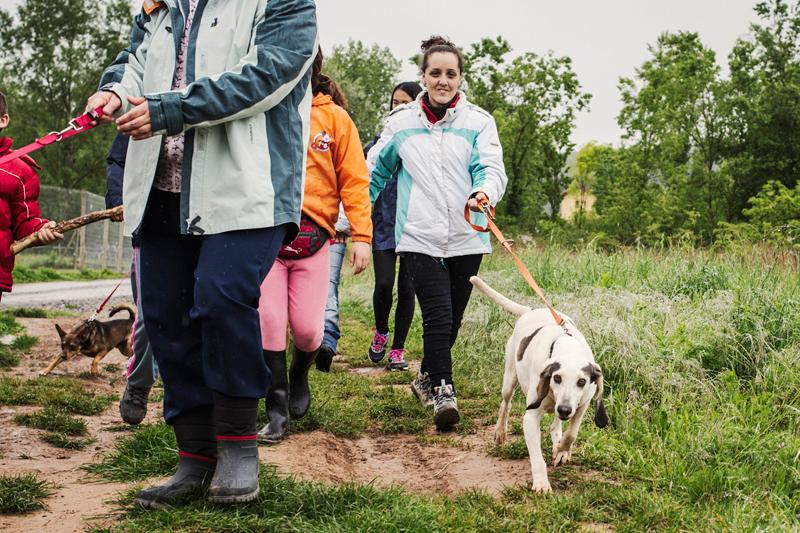 033_caminada popular solidaria _fotografo mascotas_adoptanocompres