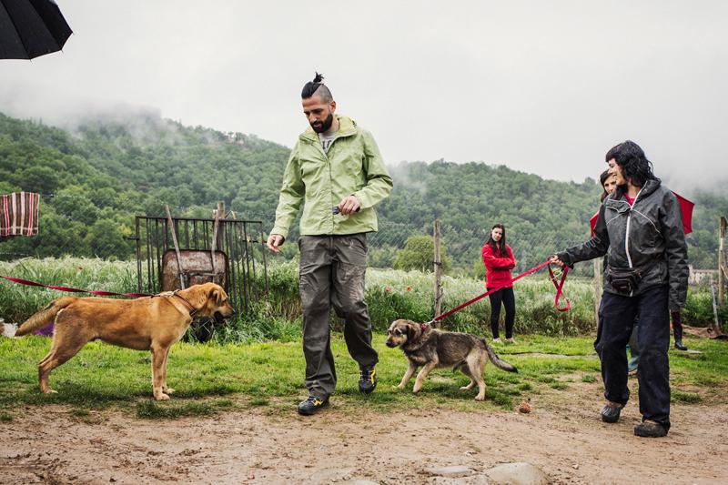 041_caminada popular solidaria _fotografo mascotas_adoptanocompres