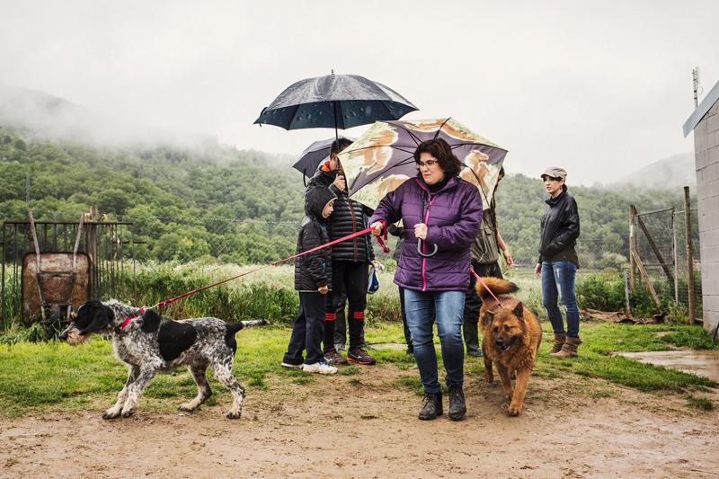 045_caminada popular solidaria _fotografo mascotas_adoptanocompres