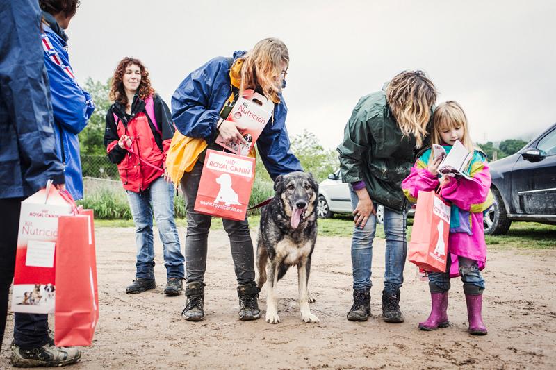 077_caminada popular solidaria _fotografo mascotas_adoptanocompres