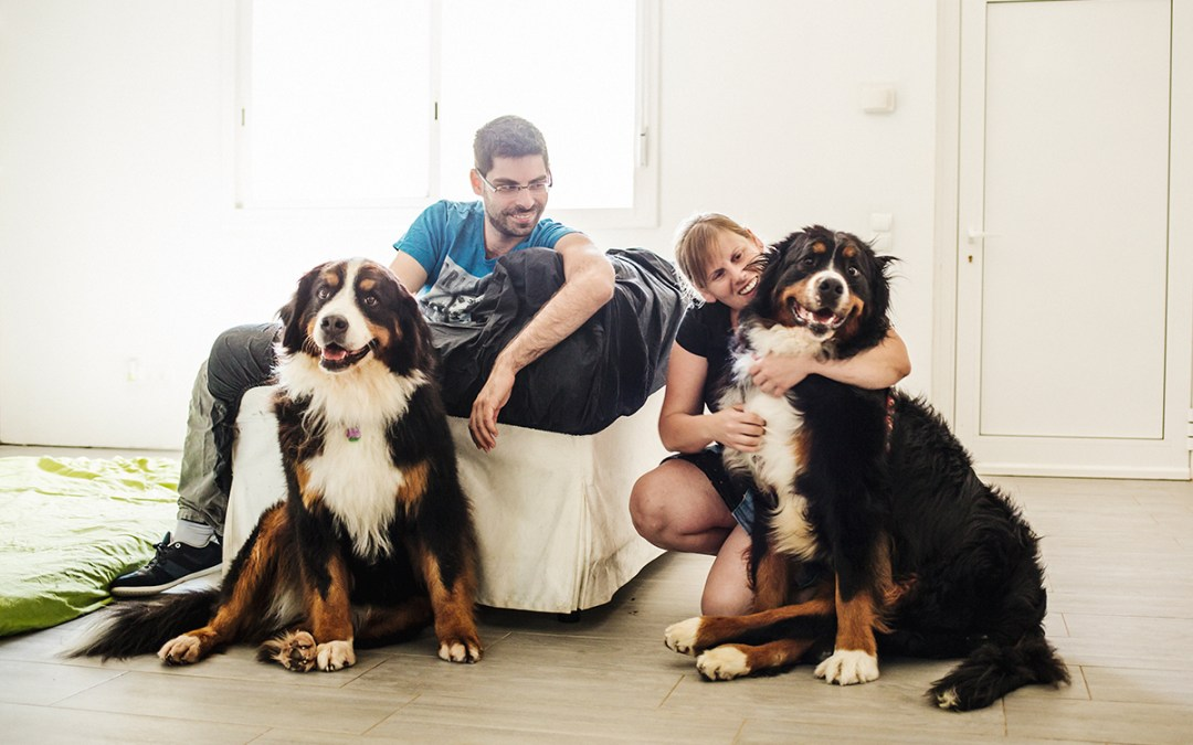Fotógrafo de mascotas «Muffin&Izoku, un decir adiós bellísimo»