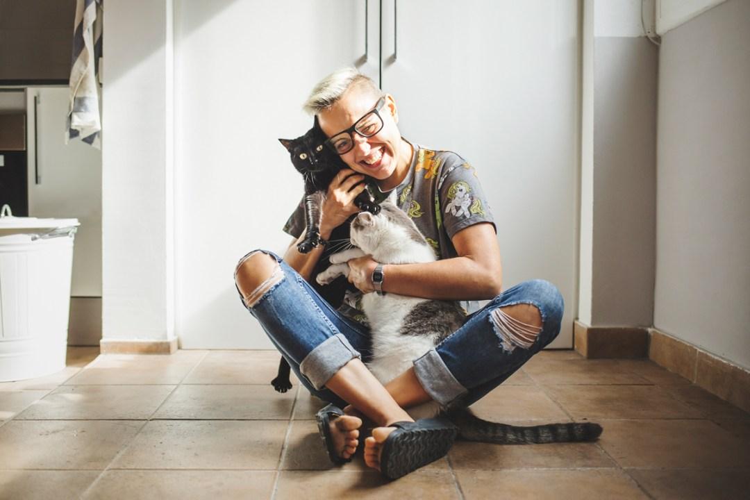 fotografo-de-mascotas-014-els-magnifics_gatos-lonabrugi