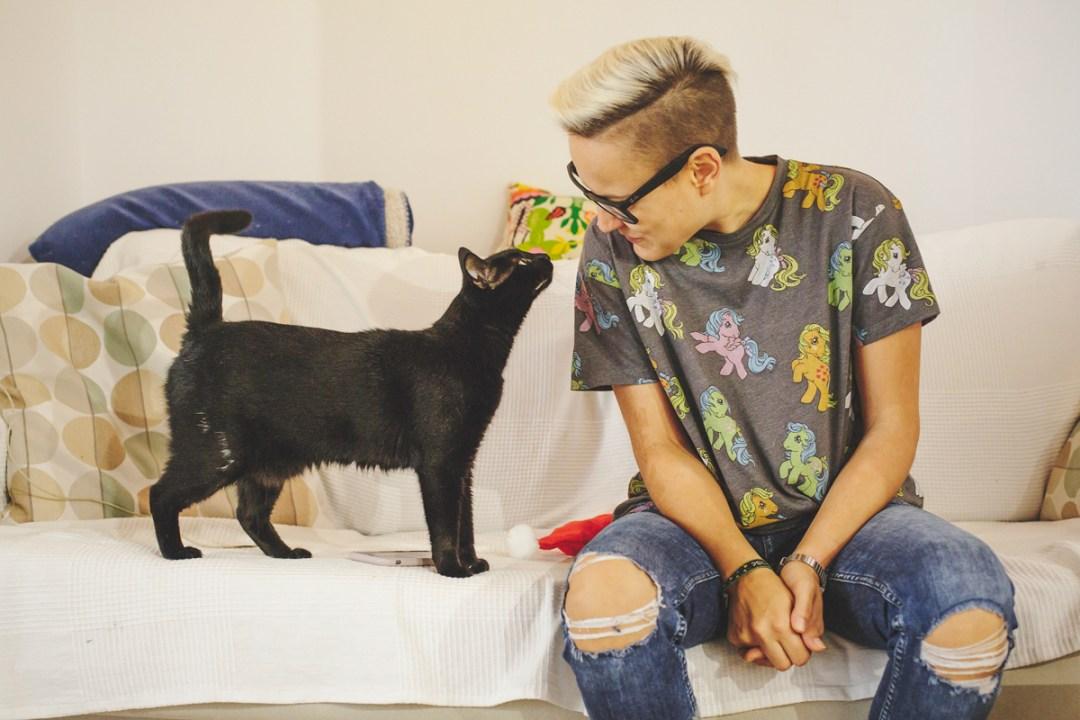 fotografo-de-mascotas-023-els-magnifics_gatos-lonabrugi