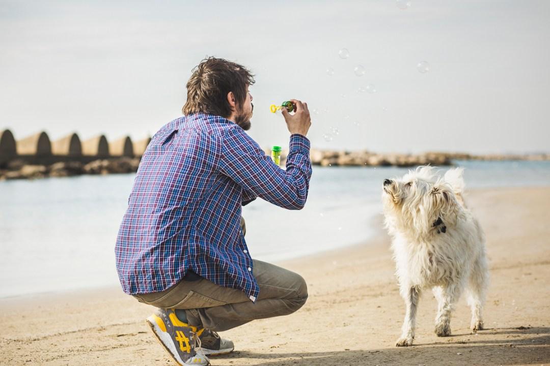 fotografo-de-mascotas-025-els-magnifics_perro-williemaggie