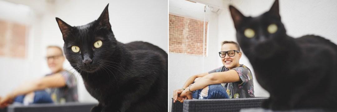 fotografo-de-mascotas-038-els-magnifics_gatos-lonabrugi