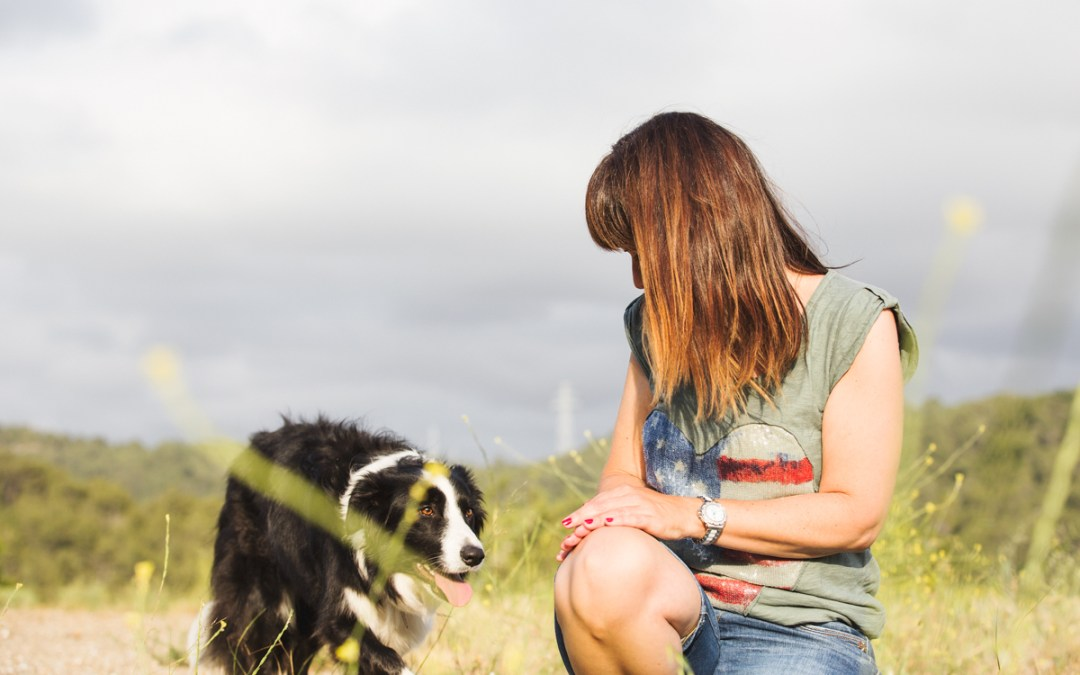 Fotógrafo de mascotas: Les Dinamites, un precioso error.