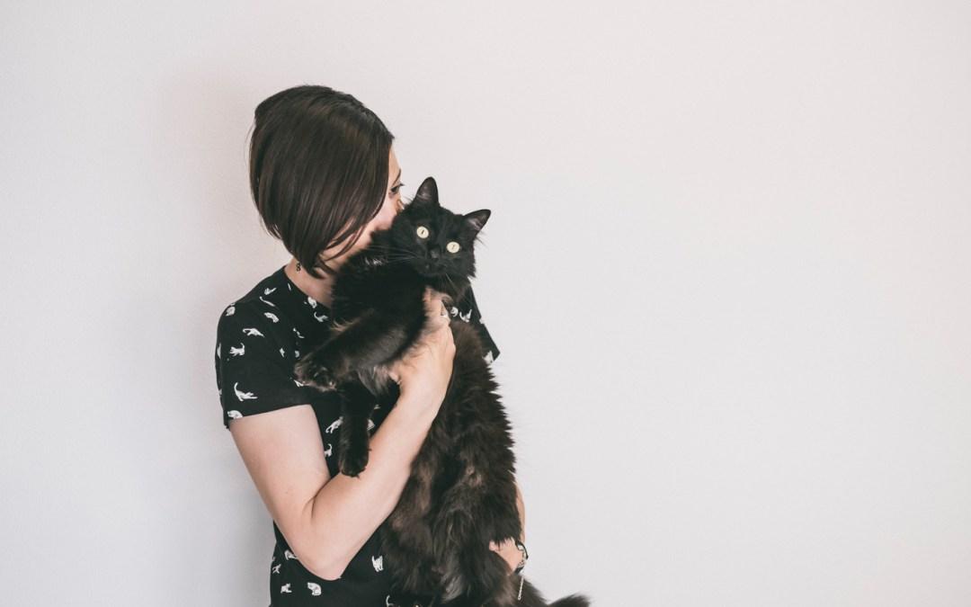 Fotógrafo de Mascotas: La casa llena de amor gatiperruno