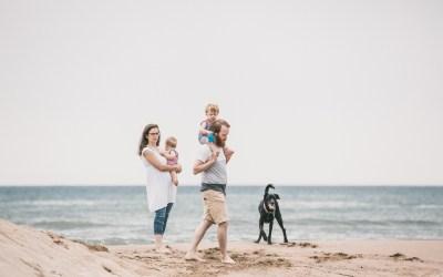 Fotógrafo de mascotas: Atardecer en la playa III