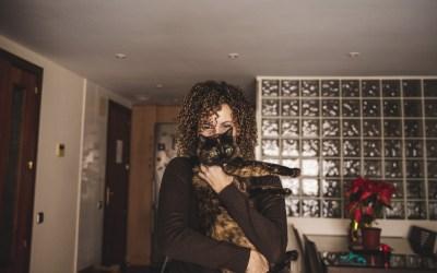 Protegido: Fotógrafo de mascotas: Saga, la gata de ojos esmeralda