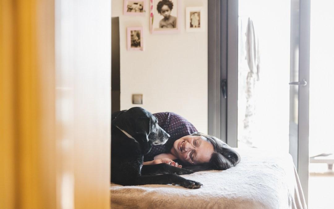 Protegido: Fotógrafa de mascotas: Frida, la orejillas divertidas