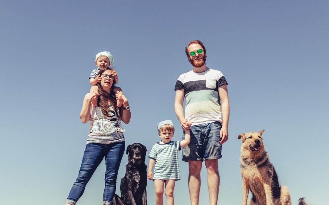 Fotógrafo de mascotas: Dexter y el día de playa más bonito del mundo