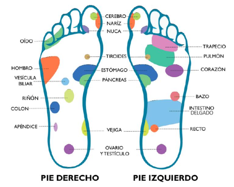 El masaje de pies que sana tu cuerpo: reflexología podal - El Sol ...