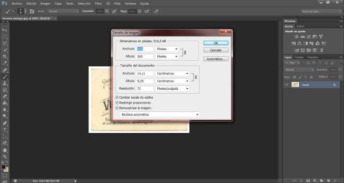 4-transfers-ampliar-pixeles-de-una-imagen