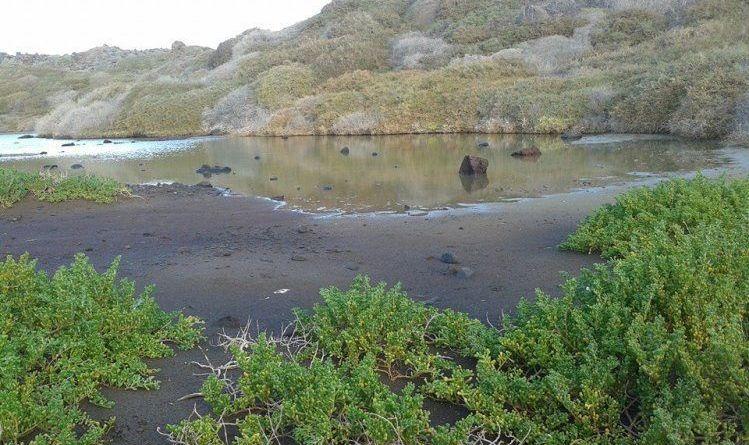 El Cabildo de La Gomera continúa con las actuaciones en varios espacios protegidos de Valle Gran Rey