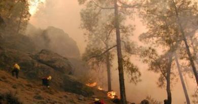 El Gobierno llevará el lunes a Consejo el decreto de ayudas a los municipios afectados por el incendio