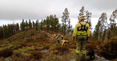 Los operarios del EIRIF de La Gomera realizan prácticas de línea de defensa en el Parque Nacional de Garajonay