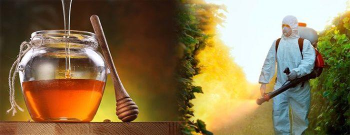 FDA Finds Glyphosate Herbicide in U.S. Honey