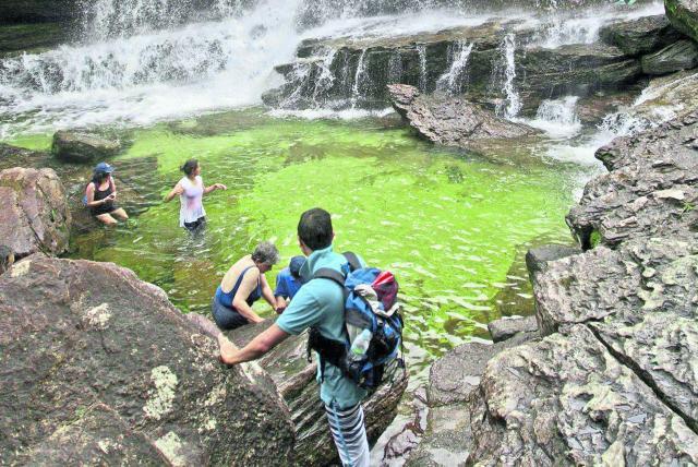 Experta de Harvard habla de retos del ecoturismo en países como Colombia -  Medio Ambiente - Vida - ELTIEMPO.COM