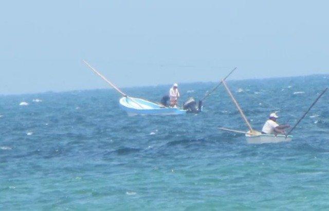 Barcos invaden área ribereña por pesca de pulpo