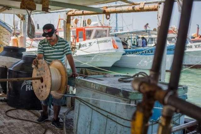"""Programa """"Peso a Peso"""" llega para pescadores progreseños"""