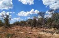 PROFEPA clausura predio por cambio de uso de suelo sin autorización