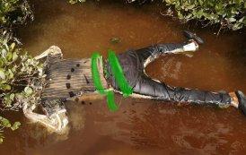 Un muerto en el manglar
