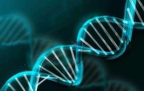 Científicos encuentran gen capaz de ayudar a 'frenar' el cáncer