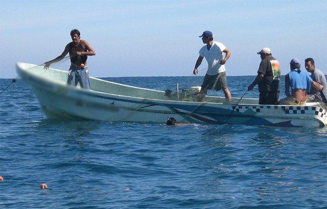 Medidas para frenar la pesca furtiva en Yucatán